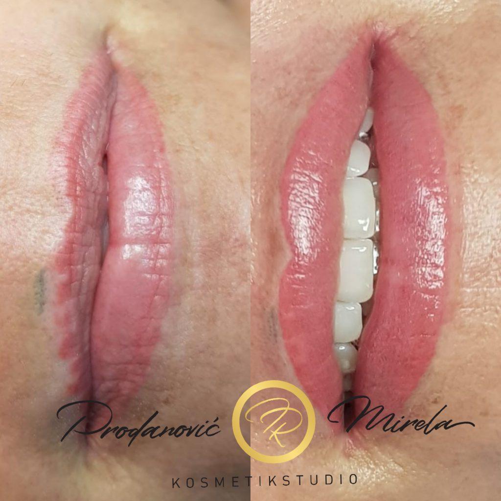 PMU Lippen Korrektur